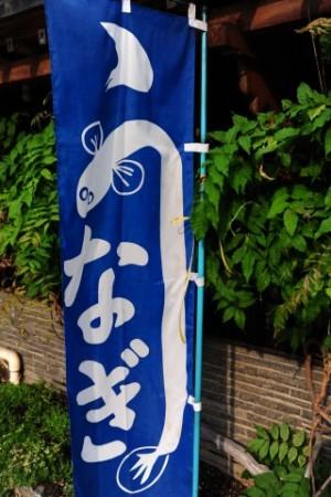 unagi flag