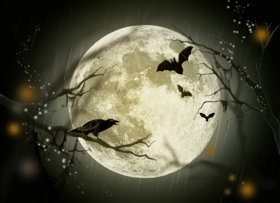halloween_209553
