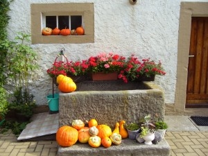 trough_floral_decorations_pumpkins