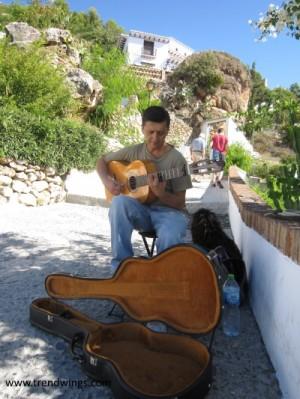 IMG_3818 - guitar