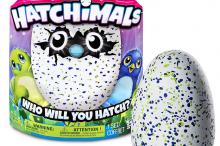 hatchimals2